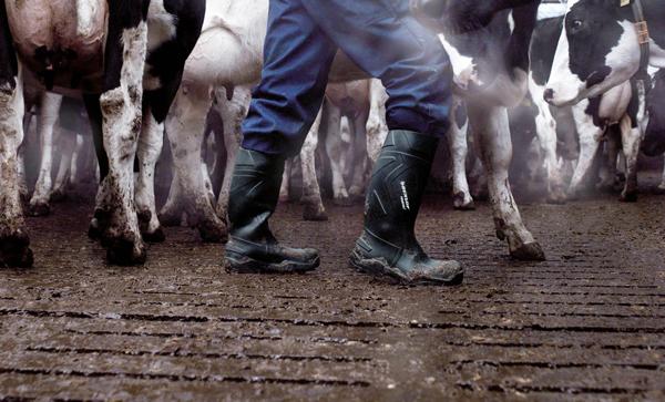 botte agriculteur